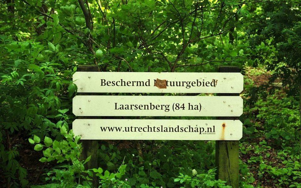 goed dating-app orgie in Rhenen