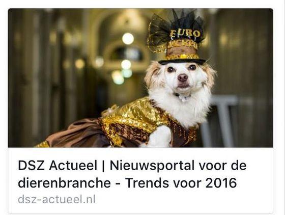 DoggyDating trend voor 2016