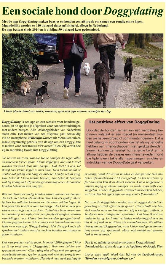 In de wijkkrant op de hoogte vertelt baasje Willemijn Jansen hoe de DoggyDating app haar heeft geholpen om haar onzekere keffertje meer zelvertrouwen heeft gegeven waardoor hij nu een sociale hond is geworden.