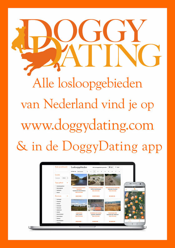 DoggyDting, the must have app for doglovers!