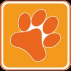 De leukste hondenwandelingen maak je met de DoggyDating app!